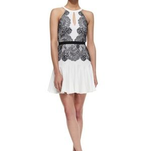 NWT BCBG Max Azria Offwhite w/ Black Lace Dress